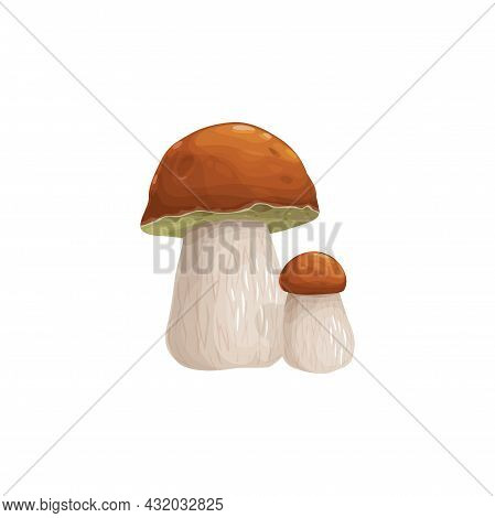 Mushroom Cep Vector Icon, Cartoon Vegetable Or Forest Editable Plant With Brown Cap And White Stipe.