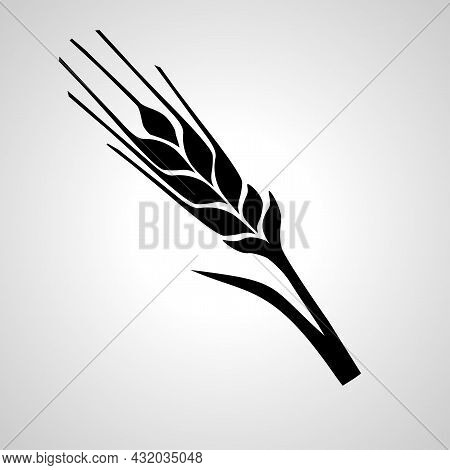 Wheat Vector Line Icon. Wheat Linear Outline Icon