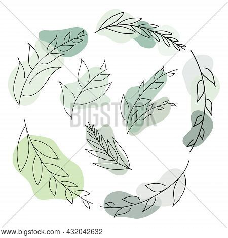 Vector Abstract Leaf Illustration Using For Logo, Wedding, Stories, Posters. Two Minimal Modern Leav