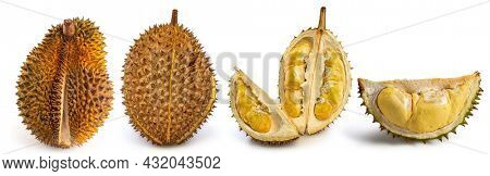 Durian isolated white background Durian golden ripe ripe durian