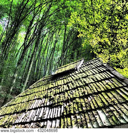 Bright Green Of Mossy Tiled Roof In Rural Serbia. Serbia, Loznica, Trsic, Vuk Karadzic's Place Of Li