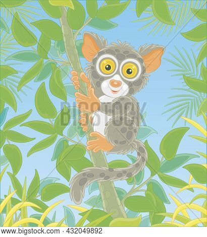Funny Small Philippine Tarsier, Tree-dwelling Exotic Primate With Very Large Eyes And A Long Tufted