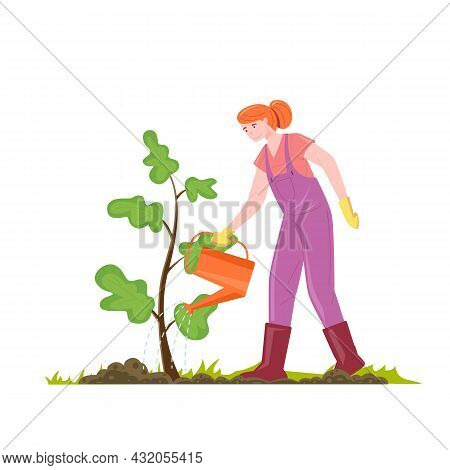 Female Gardener Waters A Tree Sapling From A Watering Can Vector Illustration