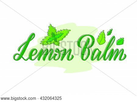 Vector Illustration Of Lemon Balm Lettering For Packages, Product Design, Banner, Spice Shop, Pharma
