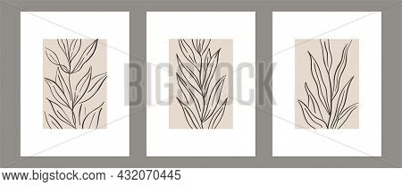 Set Of Botanical Contemporary Wall Art Poster. Tropical Foliage Line Art Drawing With Abstract Shape