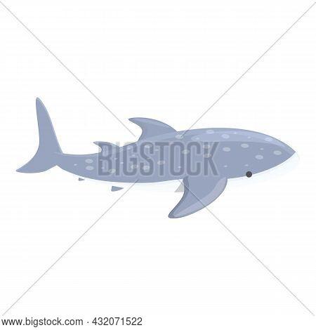Fish Whale Shark Icon Cartoon Vector. Sea Animal. Underwater Species