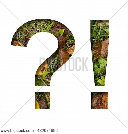 Early Autumn Font. Exclamation And Question Marks Cut Out Of Paper On A Background Of Green Grass Wi