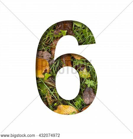 Early Autumn Font. Digit Six, 6 Cut Out Of Paper On A Background Of Green Grass With Yellow Autumn L