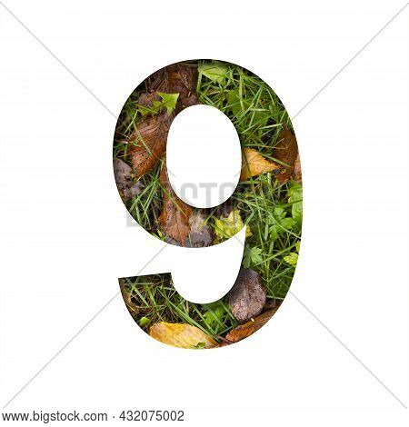 Early Autumn Font. Digit Nine, 9 Cut Out Of Paper On A Background Of Green Grass With Yellow Autumn