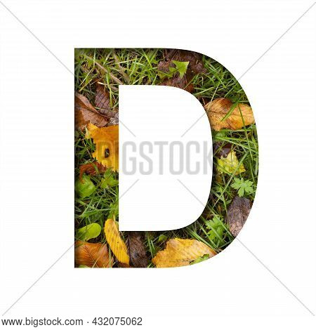 Early Autumn Font.the Letter D Cut Out Of Paper On A Background Of Green Grass With Yellow Autumn Le