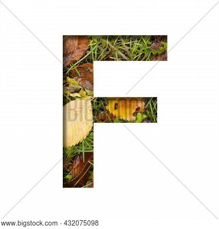 Early Autumn Font.the Letter F Cut Out Of Paper On A Background Of Green Grass With Yellow Autumn Le