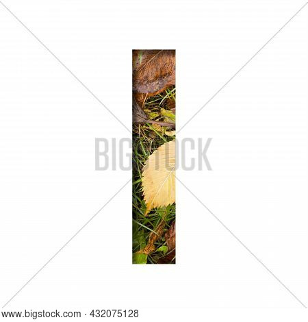 Early Autumn Font.the Letter I Cut Out Of Paper On A Background Of Green Grass With Yellow Autumn Le