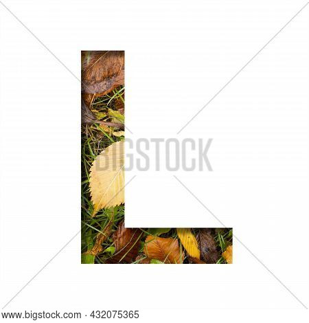 Early Autumn Font.the Letter L Cut Out Of Paper On A Background Of Green Grass With Yellow Autumn Le