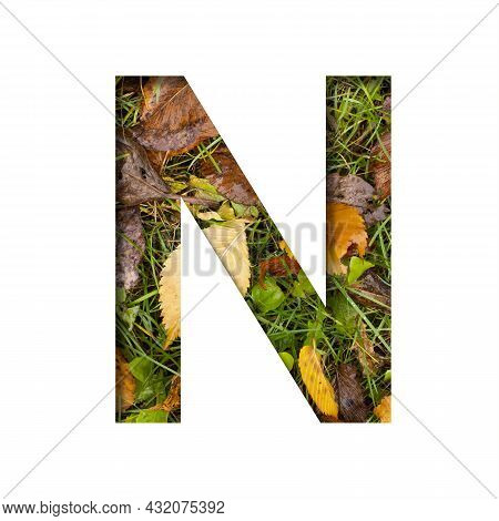 Early Autumn Font.the Letter N Cut Out Of Paper On A Background Of Green Grass With Yellow Autumn Le