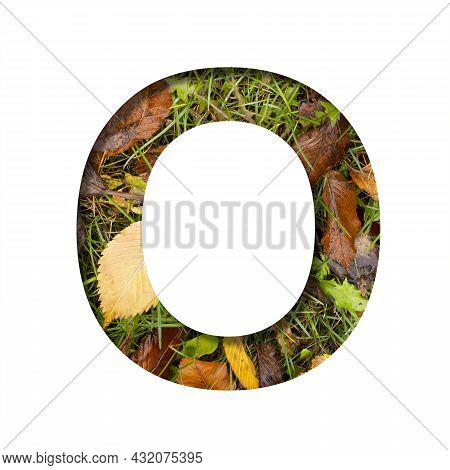 Early Autumn Font.the Letter O Cut Out Of Paper On A Background Of Green Grass With Yellow Autumn Le