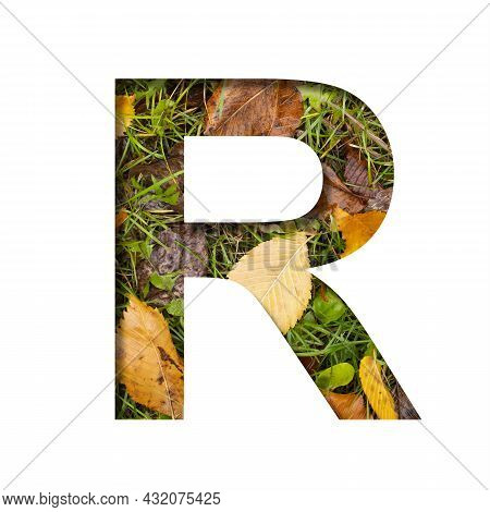 Early Autumn Font.the Letter R Cut Out Of Paper On A Background Of Green Grass With Yellow Autumn Le