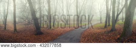 Autumn landscape, mysterious autumn alley in the fog, wide panoramic view. Foggy autumn park in October day, autumn foggy park alley, autumn park, autumn landscape, autumn trees in foggy autumn weather