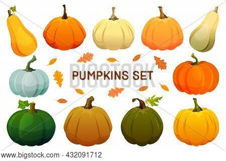 Decorative Pumpkin Or Gourd Icons, Vector Set