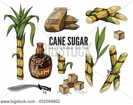 Set Of Sugar Cane Items - Stems Of Sugarcane, Cubes Refined Sugar And Rum Bottle