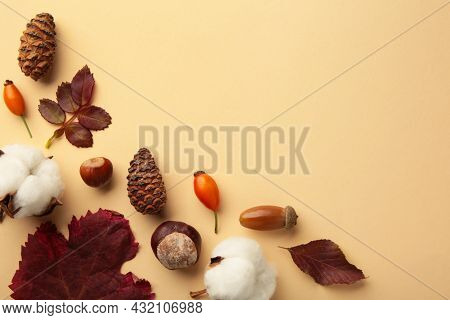 Autumn Composition. Dried Leaves, Flowers, Berries On Beige Background. Thanksgiving Day Concept.