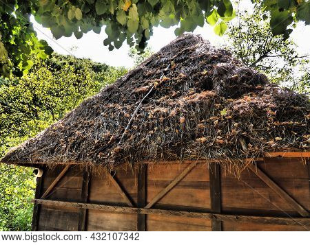Traditional Country House Or Barn With Thatched, Dry Grassy Roof In Summer In The Forest. The Craft