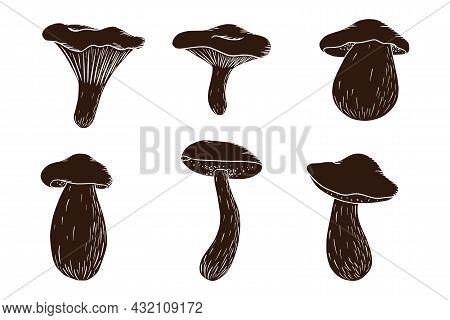 Forest Mushroom Silhouette Set. Collection Of Hand Drawn Edible Mushrooms. White Mushroom, Russula,