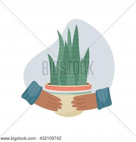 Vector Illustration With Home Plant In Pot In Hands. Decorative Plants In The Interior Of The House.