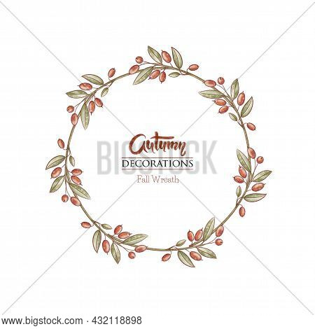 Red Berry Frame. Barberry Wreath. Autumn Hand Drawn Background