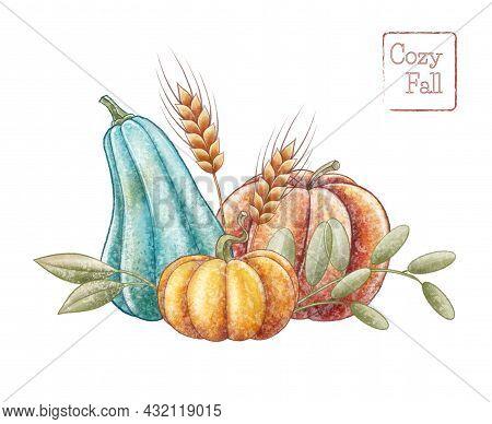 Blue Orange Pumpkin Illustration. Autumn Decotaion. Spikelet Of Wheat.