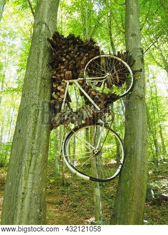 The Bike Got Stuck Between Two Trees In The Summer Afternoon. The Cyclist Pauses. Wooden Firewood Is