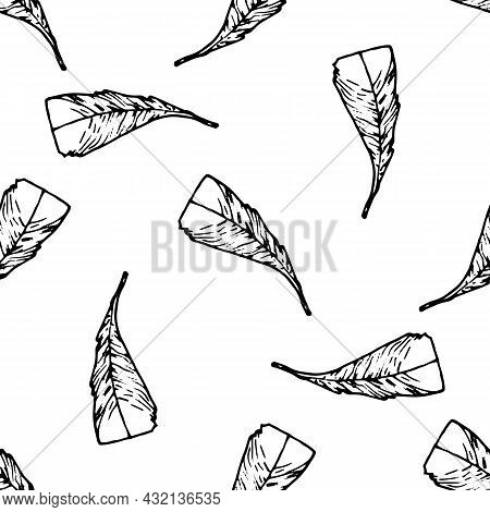 Vector Pattern Made Of A Bird's Feather. Seamless Pattern Of A Hand-drawn Bird Feather In A Sketch S