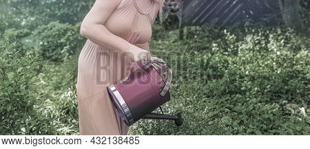 Young Woman In Pink Dress Watering Plants In A Garden In Late Afternoon Light