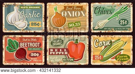 Farm Vegetable Rusty Plates Of Vector Bell Pepper, Onion, Garlic, Corn And Beet With Green Leaves, H