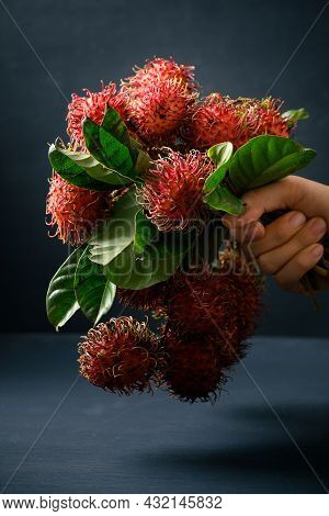 Ripe Rambutan Fruit Holding By Hand, Rambutan Is Tropical Fruit And Native Southeast Asia, Juicy And