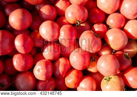 Pink Tomatoes On The Market. Tomato Background.