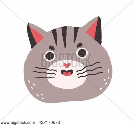 Cute Cat With Funny Angry Face Meowing. Chubby Head Of Fluffy Feline Animal. Amusing Kittys Muzzle W