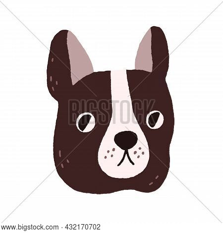 Cute Dogs Face. Funny Puppys Head Of French Bulldog. Amusing Doggy Portrait. Adorable Muzzle Of Cani