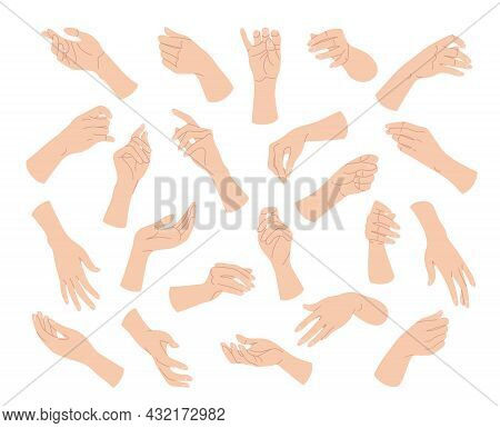 Collection Of Simple Woman Hands In Various Positions Isolated On White Background. Different Female