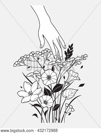 Female Hand Touches Delicate Flowers. Woman Hand And Tender Blooming Wildflowers Bunch In Black And