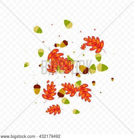 Red Leaf Background Transparent Vector. Acorn Gradation Design. Yellow Plant. Sale Texture. Brown Oa