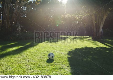 Football lying on grass in garden with trees on sunny day. spending time in garden.