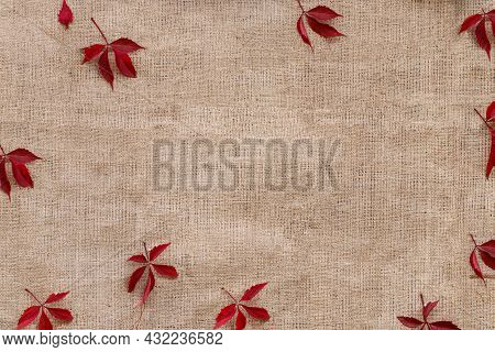 Autumn Red Leaves On Sack Texture Background.