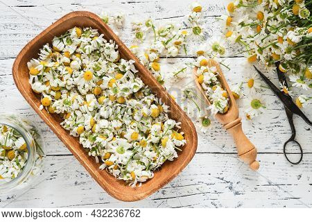Wooden Bowl Of Dried Daisy Flowers, Glass Jar Of Dry Chamomile Buds And Bunch Of Daisy Flowers On Wh