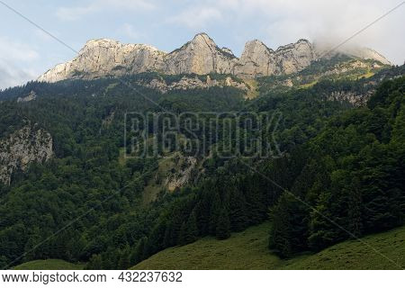 Swiss Mountain Range Photographed From Bottom To Top In Spring With Fir Forest And High Fog On Peak