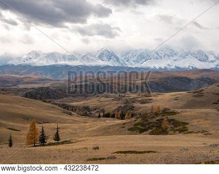 Autumn Landscape. View Of The Altai Mountains, Snowy Peaks. Severo-chuysky Ridge, Chuysky Tract, Alt