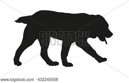 Black Dog Silhouette. Walking Central Asian Shepherd Dog Puppy. Alabai Or Aziat. Pet Animals. Isolat