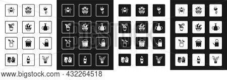 Set Flower, Cactus Peyote In Pot, Beetle Bug, Vase, Vase, Watering Can And Plant Icon. Vector