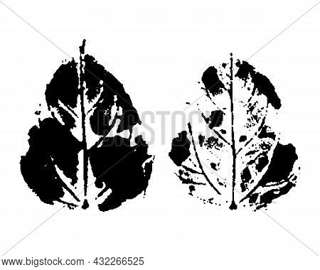 Stamp Of Leaf. Black And White. Ink Imprint Of Autumn Leaf With Texture, Isolated On White. Overlay