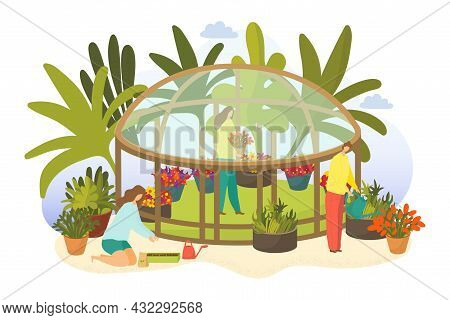 Greenhouse With Plant, Vector Illustration, Flat Woman Man People Character Gardening Plant, Growing