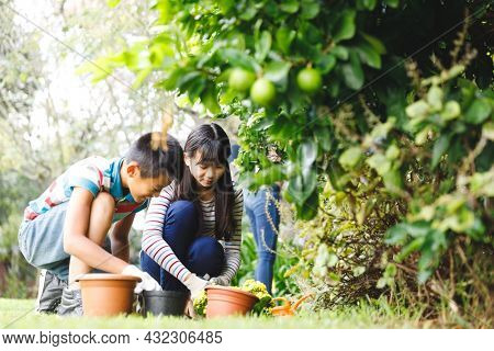 Happy asian brother and sister smiling, wearing gloves and working in garden. siblings spending leisure time at home gardening.